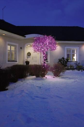 Micro-Lichterkette Außen netzbetrieben 40 LED Pink Beleuchtete Länge: 2.73 m Konstsmide 3627-340