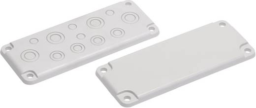 Blindplatte Polycarbonat Licht-Grau (RAL 7035) Fibox EK MB 10324 1 St.