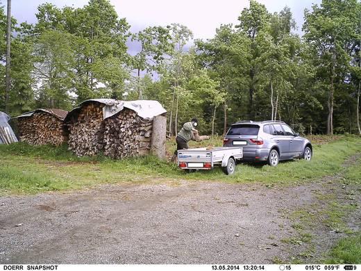 Wildkamera Dörr Foto Snap Shot Mini 5.0 Black LED 5 Mio. Pixel Black LEDs Camouflage