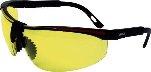 Schutzbrille protectionworld 2012008 Schwarz, Rot DIN EN 166-1