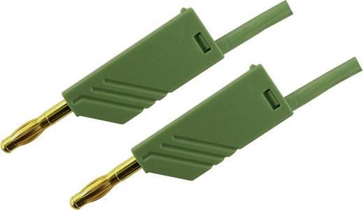 Messleitung [ Lamellenstecker 4 mm - Lamellenstecker 4 mm] 0.25 m Grün SKS Hirschmann MLN 25/2,5 groen / green Au