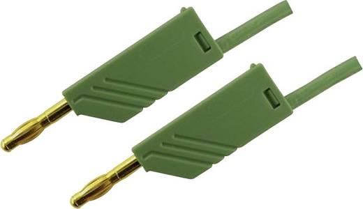 Messleitung [ Lamellenstecker 4 mm - Lamellenstecker 4 mm] 1 m Grün SKS Hirschmann MLN 100/2,5 Au groen
