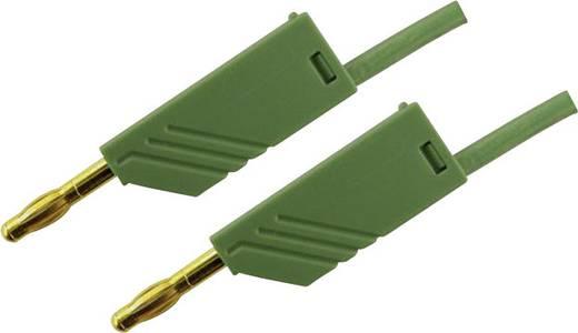 Messleitung [ Lamellenstecker 4 mm - Lamellenstecker 4 mm] 2 m Grün SKS Hirschmann MLN 200/2,5 Au gruen