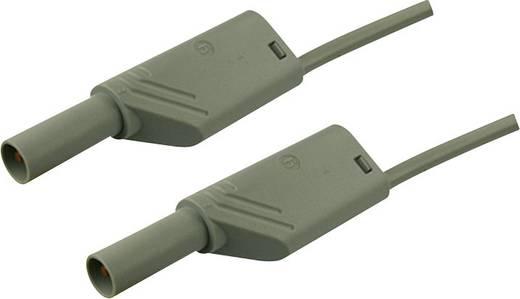 Sicherheits-Messleitung [ Lamellenstecker 4 mm - Lamellenstecker 4 mm] 1 m Grau SKS Hirschmann MLS WS 100/2,5 grau/grey