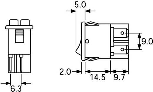 Wippschalter 250 V/AC 10 A 2 x Aus/Ein Arcolectric H880TVAAAB rastend 1 St.