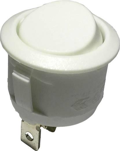 Wippschalter 250 V/AC 6 A 1 x Ein/Ein R13-112C W/W rastend 1 St.