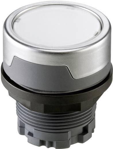 Drucktaster Silber-Grau Schlegel RMCTKL 1 St.