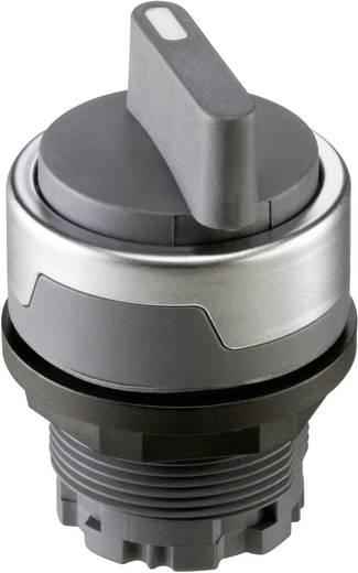 Wahltaste Silber-Grau 1 x 90 ° Schlegel RMCSTA 1 St.