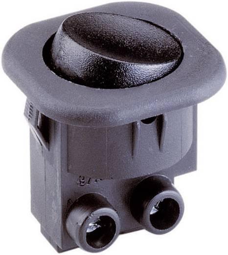 Wippschalter 250 V/AC 6 A 1 x Aus/Ein interBär 8014-104.01 rastend 1 St.