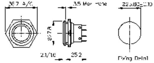 Vandalismusgeschützter Drucktaster 250 V/AC 5 A 1 x Aus/(Ein) Bulgin MP0038 IP66 (Frontplattendichtung) tastend 1 St.