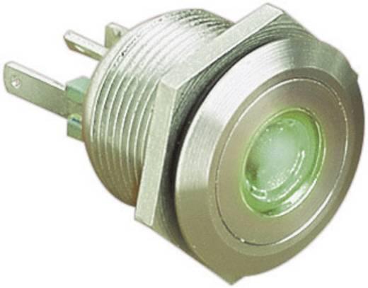 Vandalismusgeschützter Drucktaster 24 V/DC 0.05 A 1 x Aus/(Ein) Bulgin MPI001/28/GN IP66 tastend 1 St.