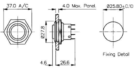 Vandalismusgeschützter Drucktaster 250 V/AC 5 A 1 x Aus/(Ein) Bulgin MP0038/2 IP66 (Frontplattendichtung) tastend 1 St.