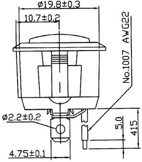 Kfz-Wippschalter 12 V/DC 20 A 1 x Ein/Ein rastend SCI R13-112CL-02 1 St.