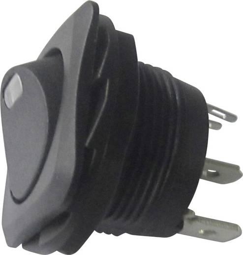 Wippschalter 250 V/AC 10 A 1 x Aus/Ein SCI R13-135L-02 rastend 1 St.
