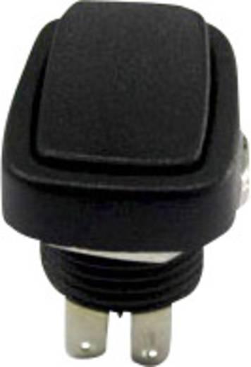 Wippschalter 250 V/AC 3 A 2 x Ein/Ein SCI R13-213B-03 rastend 1 St.