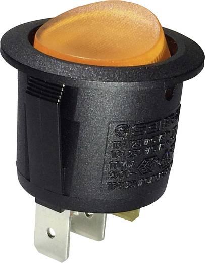 Wippschalter 250 V/AC 10 A 1 x Aus/Ein SCI R13-223B-01 Y rastend 1 St.