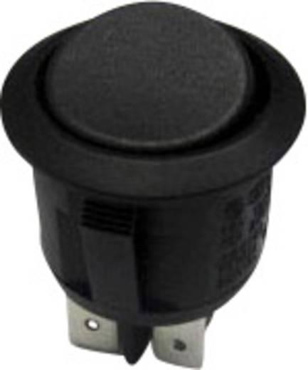 SCI Wippschalter R13-244C-02 250 V/AC 10 A 2 x Aus/Ein rastend 1 St.