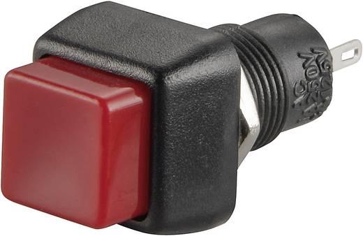 Druckschalter 250 V/AC 1 A 1 x Aus/Ein SCI R13-83B-05RT rastend 1 St.