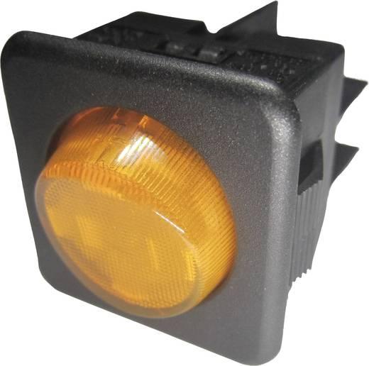 Wippschalter 250 V/AC 10 A 1 x Aus/Ein SCI R13-104B-01 B/Y rastend 1 St.