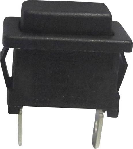 Drucktaster 250 V/AC 6 A 1 x Aus/(Ein) SCI R13-516A-02 tastend 1 St.