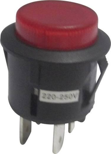 SCI R13-527AL-02RT Drucktaster 250 V/AC 6 A 1 x Aus/(Ein) tastend 1 St.