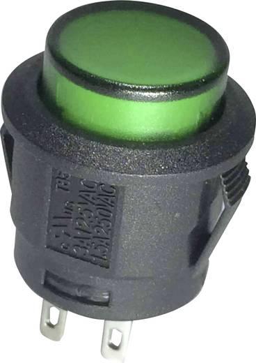 Druckschalter 250 V/AC 6 A 1 x Ein/Aus SCI R13-527BL-02GN rastend 1 St.