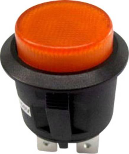SCI R13-527BL-02YL Druckschalter 250 V/AC 6 A 1 x Ein/Aus rastend 1 St.