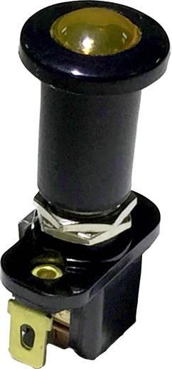 Kfz-Zugschalter 12 V/DC 10 A 1 x Aus/Ein rastend SCI A3-7 1 St.
