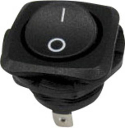 Wippschalter 250 V/AC 10 A 1 x Aus/Ein SCI R13-135A-02 rastend 1 St.