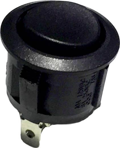 Wippschalter R13-112F B/B 250 V/AC 6 A 1 x Aus/(Ein) tastend 1 St.