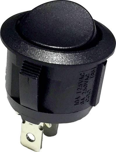 Wippschalter 250 V/AC 6 A 1 x Ein/(Ein) R13-112G B/B tastend 1 St.
