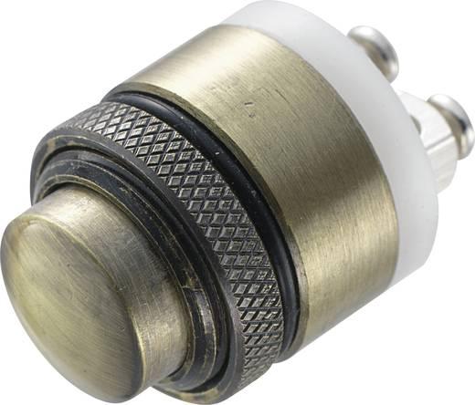 Vandalismusgeschützter Drucktaster 48 V/DC 2 A 1 x Aus/(Ein) TRU COMPONENTS GQ-16B-M IP65 tastend 1 St.