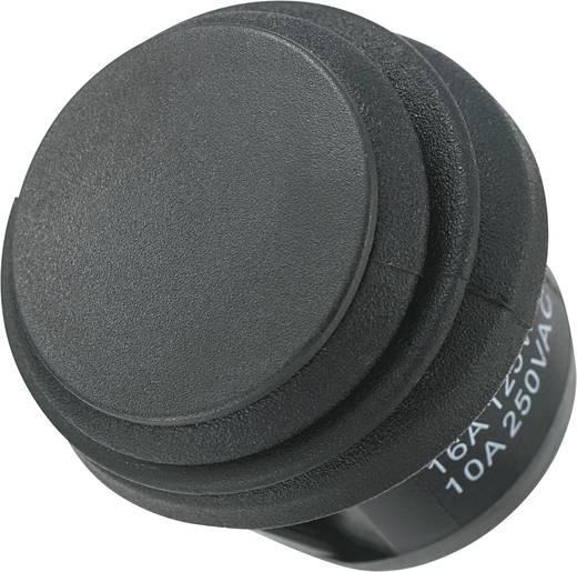 SCI Wippschalter R13-112E8-02 250 V/AC 10 A 1 x Ein/(Aus) IP65 tastend 1 St.