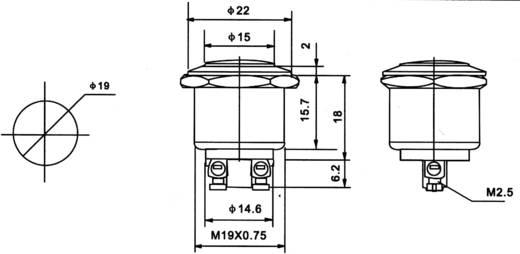 PBS-28B Vandalismusgeschützter Drucktaster 250 V/AC 2 A 1 x Aus/(Ein) tastend 1 St.