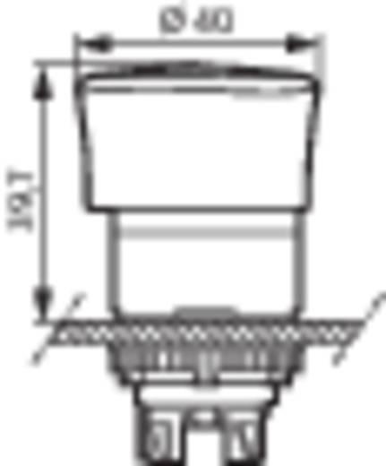 Pilztaster Frontring Kunststoff, Schwarz Rot Drehentriegelung BACO L22ER01 1 St.