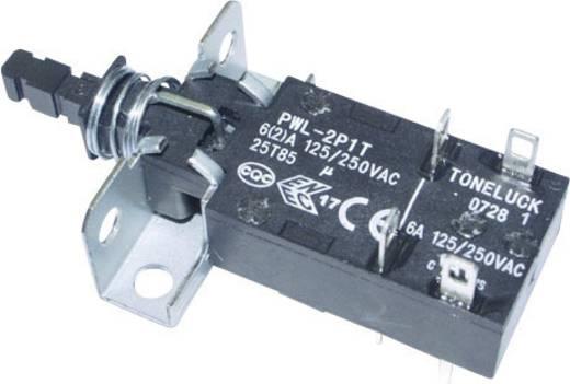 Netzschalter, Druckschalter 250 V/AC 6 A 2 x Aus/Ein PWL-2P1TL-6SASHA rastend 1 St.