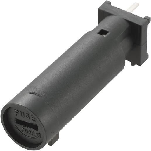 Sicherungshalter Passend für Feinsicherung 6.3 x 32 mm 15 A 250 V/AC MF-560 1 St.