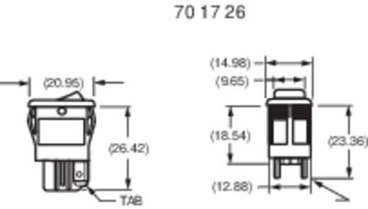Wippschalter 250 V/AC 6 A 1 x Aus/Ein Carlingswitch 62116919-0-9G rastend 1 St.