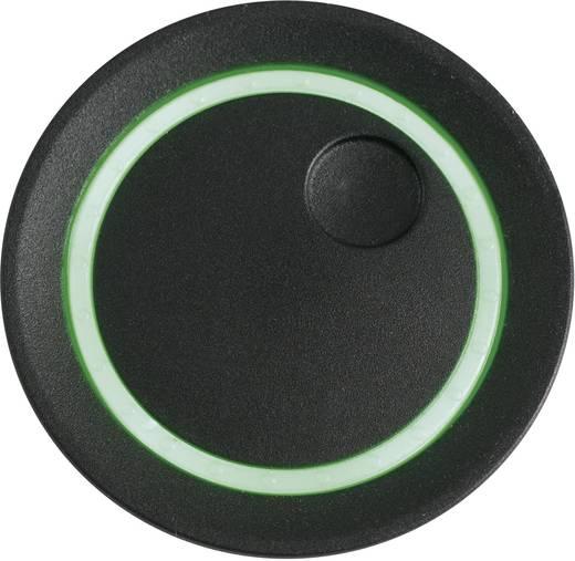 Drehknopf Schwarz (Ø x H) 41 mm x 21 mm OKW D8741039 1 St.