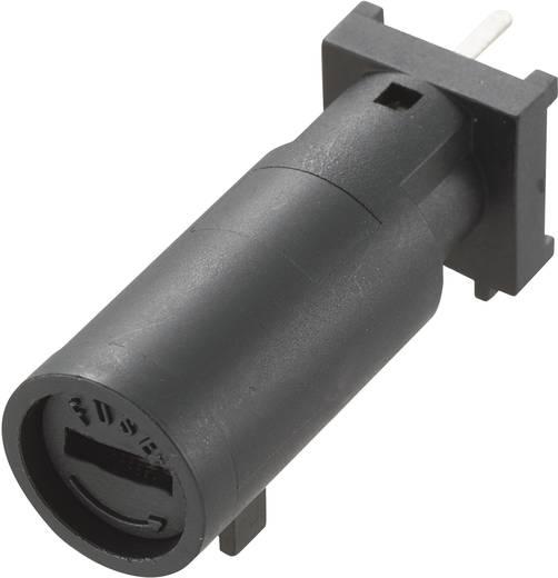 Sicherungshalter Passend für Feinsicherung 5 x 20 mm 10 A 250 V/AC MF-561 1 St.