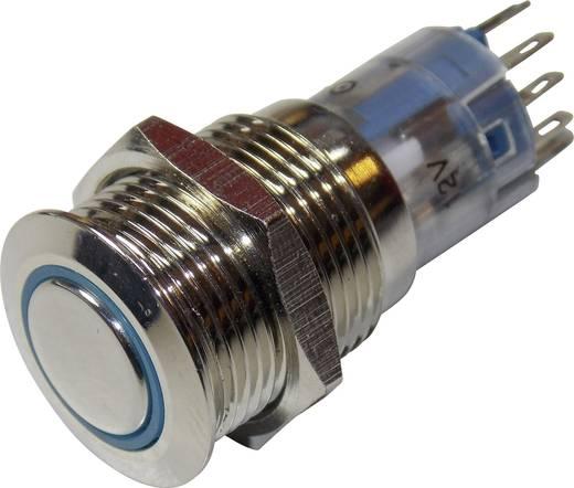 TRU COMPONENTS LAS2GQF-11ZE/B/12V/N/P Vandalismusgeschützter Druckschalter 250 V/AC 3 A 1 x Ein/Ein IP67 rastend 1 St.