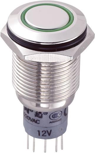 Vandalismusgeschützter Drucktaster 250 V/AC 3 A 2 x Ein/(Ein) LAS2GQF-22E/G/12V/N/P IP65 tastend 1 St.
