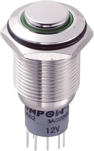 Vandalismusgeschützter Drucktaster 250 V/AC 3 A 2 x Ein/(Ein) LAS2GQH-22E/G/12V/S/P IP65 tastend 1 St.