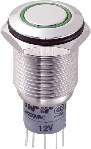 Vandalismusgeschützter Drucktaster 250 V/AC 3 A 2 x Ein/(Ein) LAS2GQF-22E/G/12V/S/P IP65 tastend 1 St.