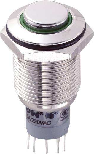 Vandalismusgeschützter Druckschalter 250 V/AC 3 A 2 x Ein/Ein TRU Components LAS2GQH-22ZE/G/12V/N/P IP67 rastend 1 St.