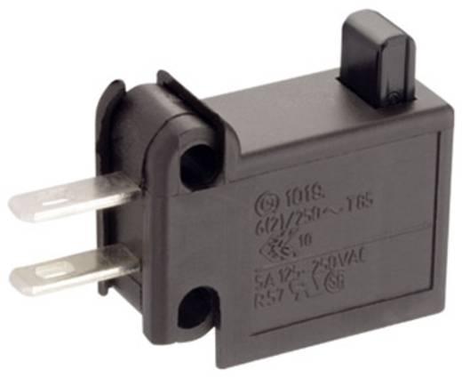 Marquardt Mikroschalter 1019.5101 250 V/AC 6 A 1 x Aus/(Ein) tastend 1 St.