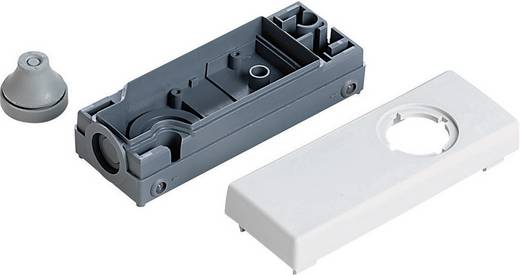 Leergehäuse für Drucktaster (L x B x H) 109 x 40 x 27 mm Grau RAFI 1.20.810.303/0000 1 St.