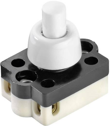 interBär 3076-001.01 Druckschalter 250 V/AC 2 A 1 x Aus/Ein rastend 1 St.