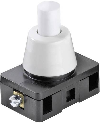 Druckschalter 250 V/AC 6 A 1 x Ein/Aus interBär 8001-007.01 rastend 1 St.