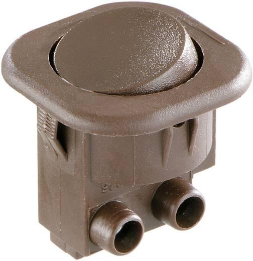 interBär Wippschalter 8014-109.01 250 V/AC 6 A 1 x Aus/Ein rastend 1 St.
